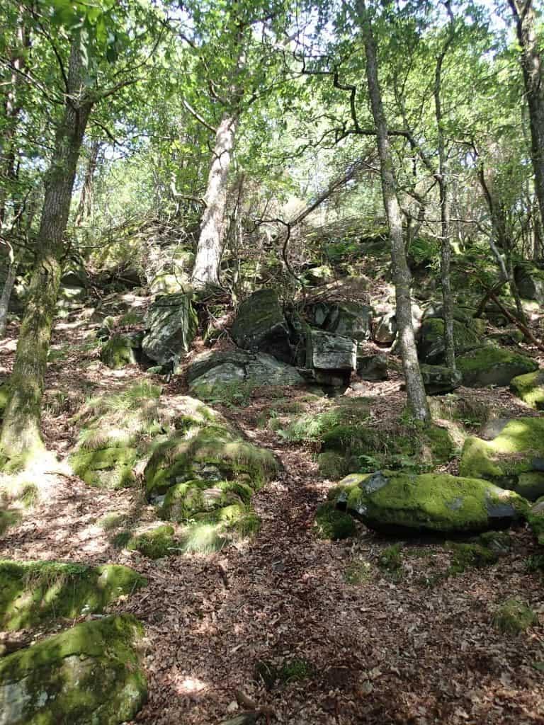 Vejen til grotterne nær Göteborg